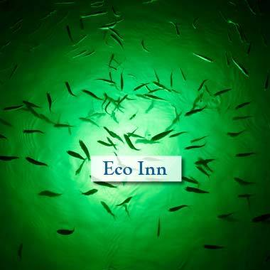 Eco friendly Inn