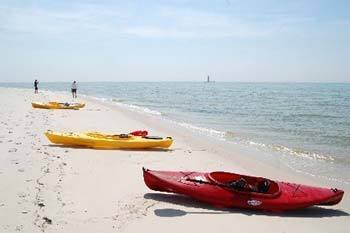 kayaks on chesapeake bay beach