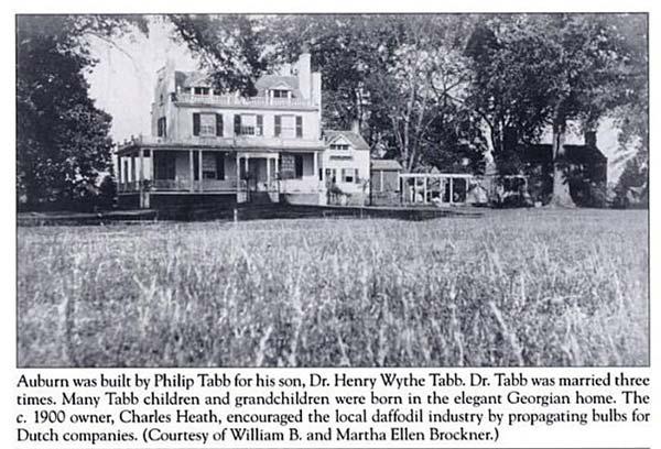 Auburn Plantation Mathews VA