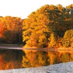 Fall at Inn at Tabbs Creek