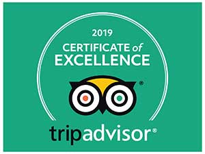 2019 Trip Advisor Badge of Excellence